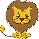 DM、狮子座