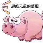 vip丶皮皮猪