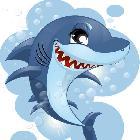 一条搁浅的死鲨鱼