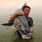 游钓中国李大毛