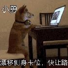 Hz-狗勇